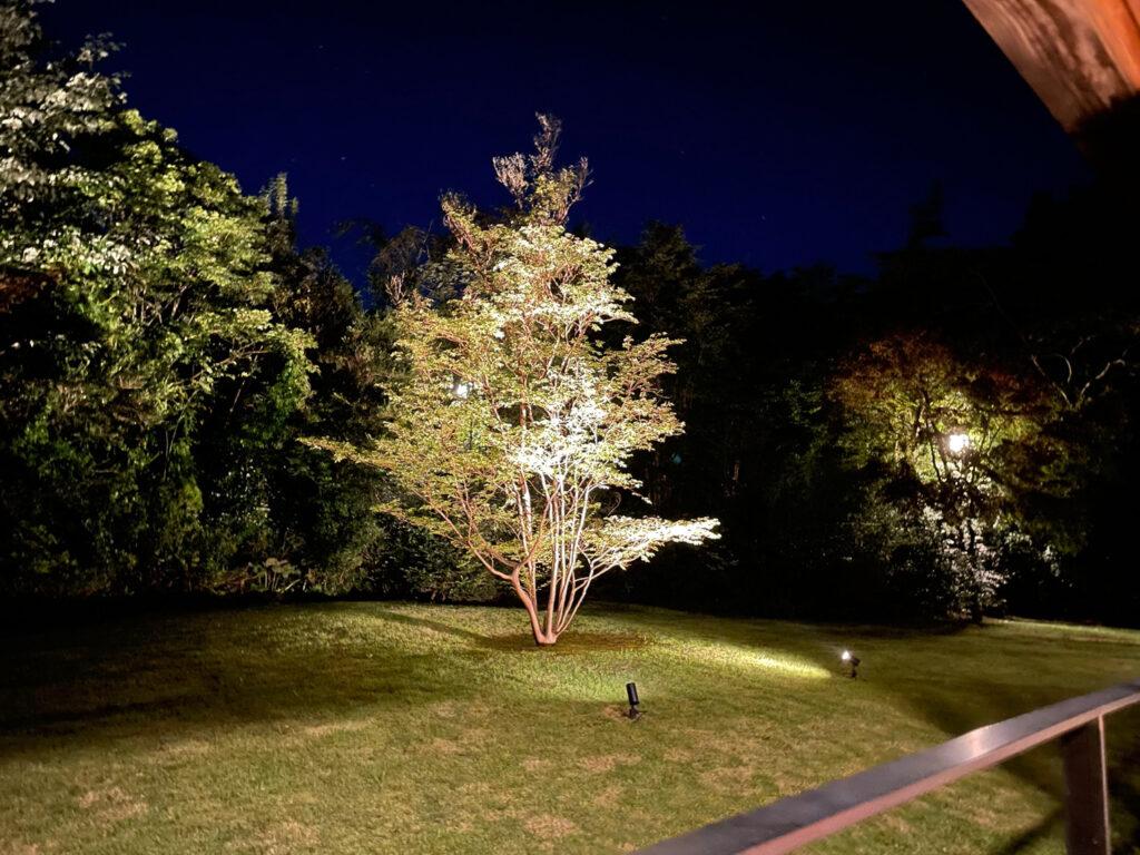 箱根仙石原【風雅】露天風呂付き客室はカップル温泉旅行にオススメ:夜のお庭
