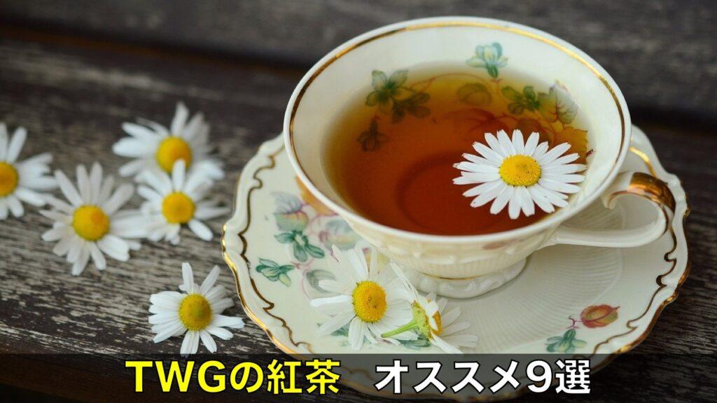 徹底比較 TWGの美味しい紅茶はプレゼントに最適!オススメ9選